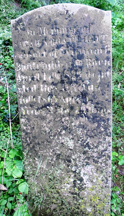 Sarah Ann Cook Boatright Gravestone